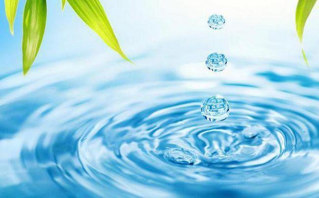 для чого потрібна вода