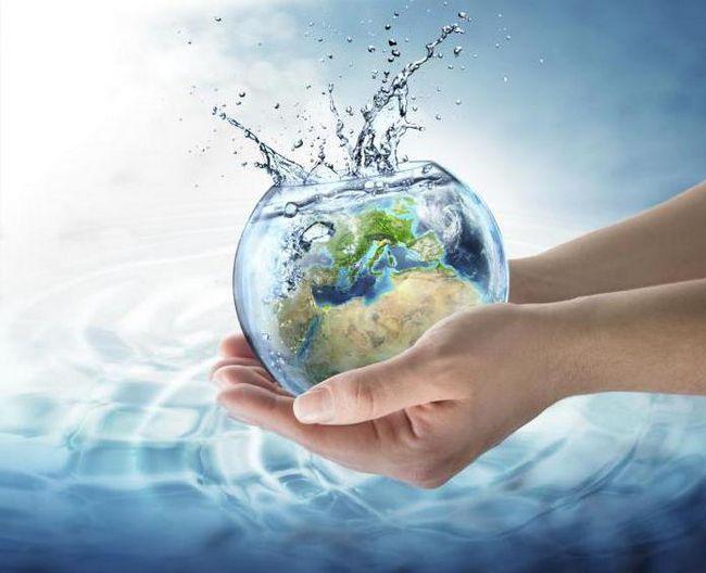 для чого організму потрібна вода