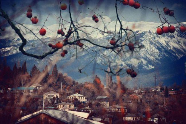 Фото - Абхазія взимку: фото, відгуки. Що подивитися в Абхазії взимку?