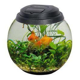 Акаваріум aquael