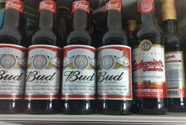 бад пиво