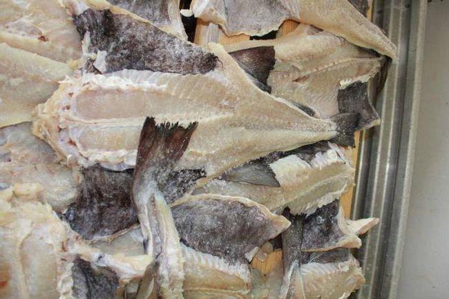 підприємства з переробки риби
