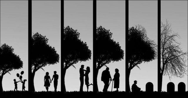 що є життя