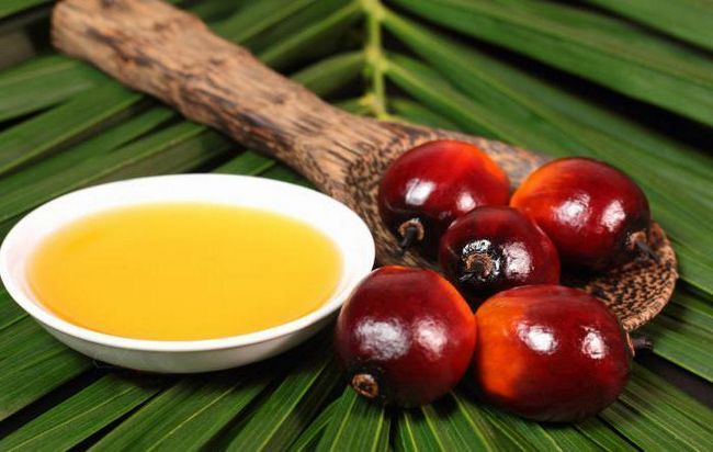 Фото - Для чого додають в продукти харчування та дитячі суміші пальмова олія? З чого виробляють цей продукт, у чому його користь і шкода?