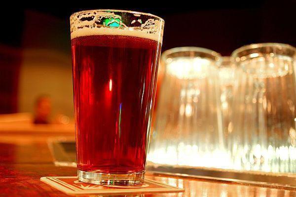 домашнє пиво з хмелю