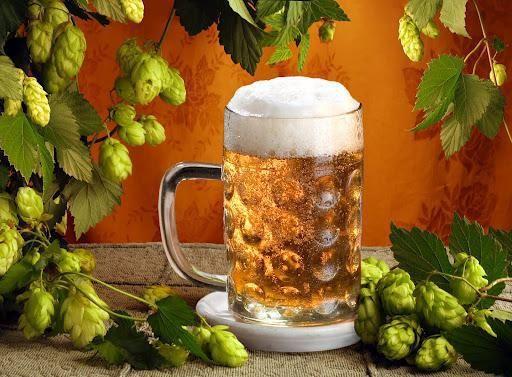 просте домашнє пиво