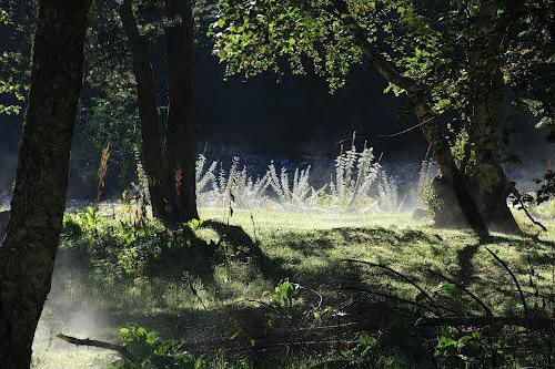 парк айвазовского як дістатися