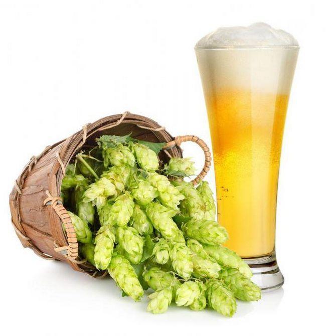 Французьке пиво «1 664»