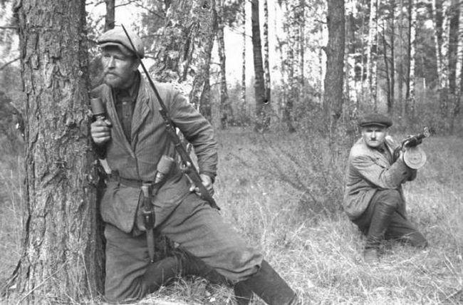 Фото - Герої-партизани Великої Вітчизняної війни (1941-1945)