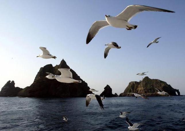 солоність японського моря