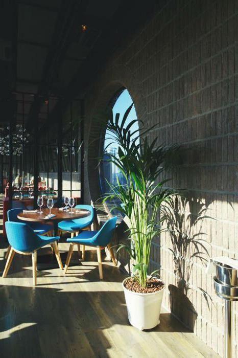 ресторани з панорамним видом спб
