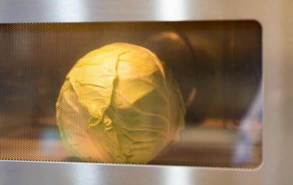 Фото - Як приготувати капусту для голубців в мікрохвильовці? Кулінарні секрети