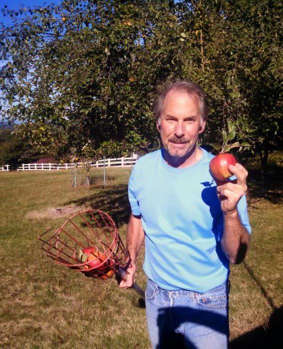 пристосування для збору яблук з пластикової пляшки