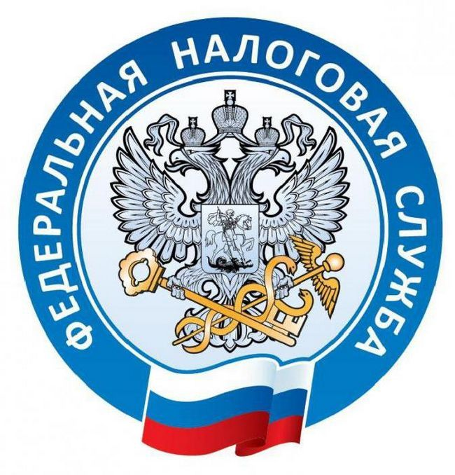Фото - Які податки платять фірми в Росії?