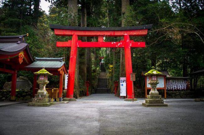 Яку релігію сповідують японці