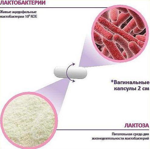 лактонорм капсули інструкція із застосування