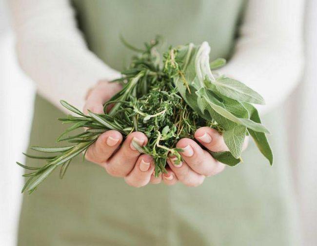 Фото - Монастирський чай від паразитів: склад трав, рецепт, особливості застосування та відгуки