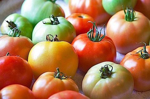 Фото - Чи можна їсти помідори при грудному вигодовуванні?