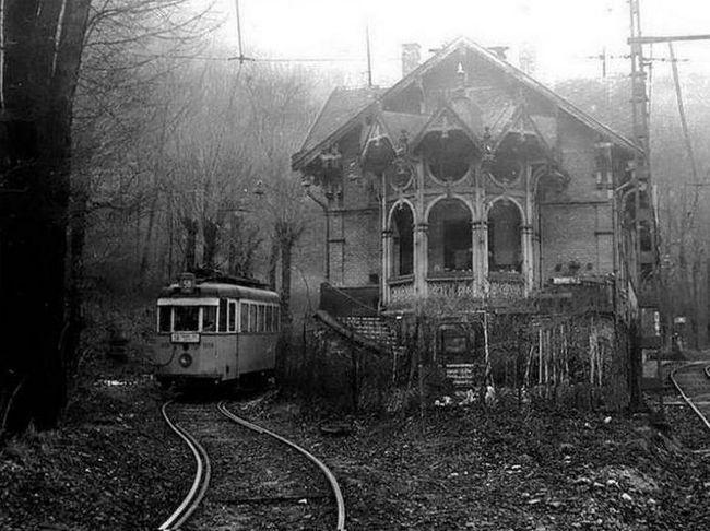 Гумільов заблукав трамвай аналіз вірша коротко