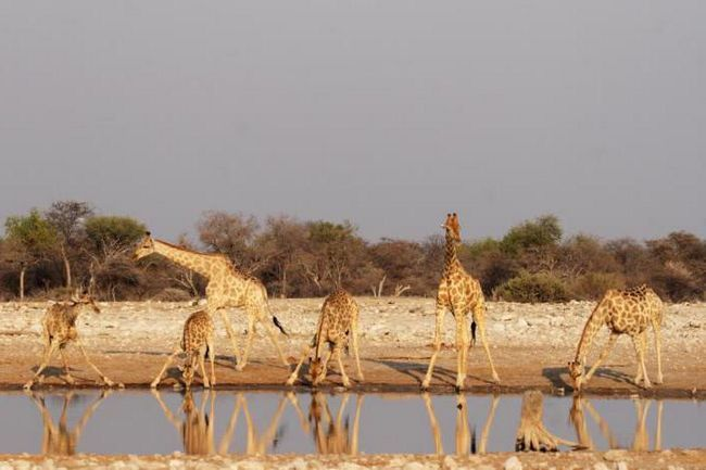 намібія столиця фото