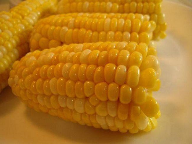 кукурудза ціна
