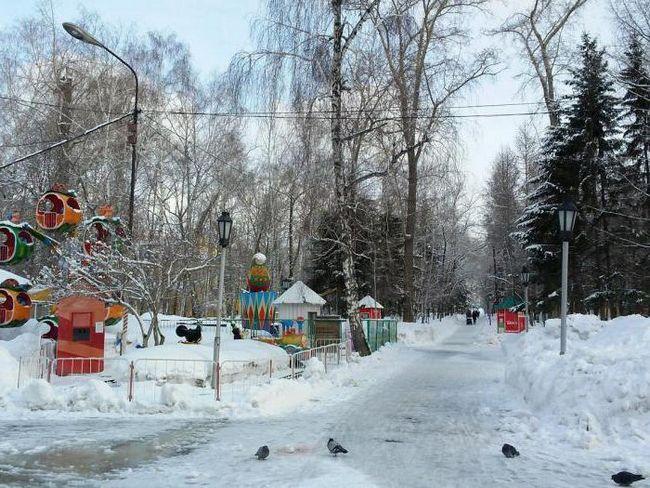 Каток в центральному парку новосибірськ