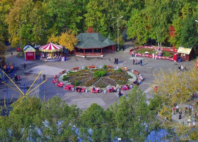 Новосибірськ центральний парк камери