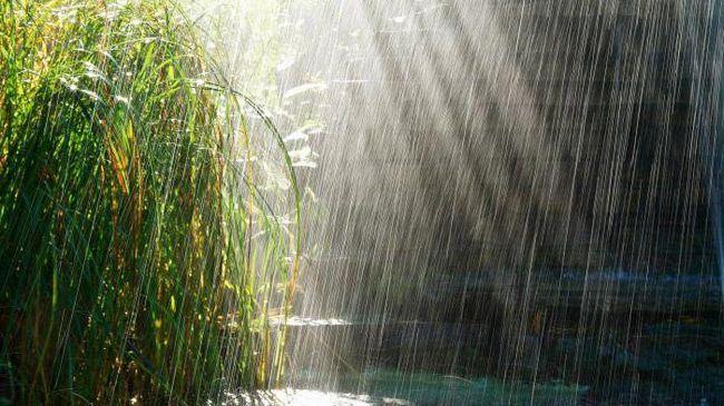 Чим відрізняється зливовий дощ від буря