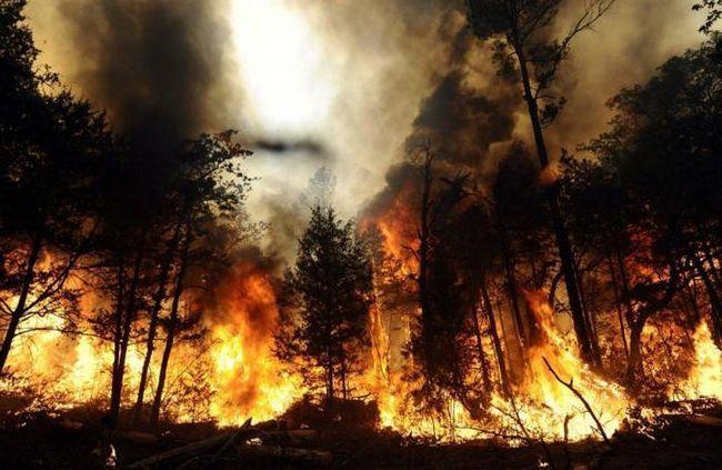 Точне визначення пожежі