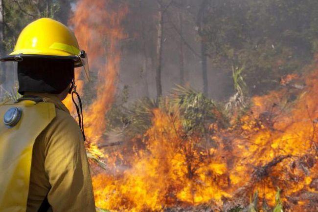 Природні пожежі визначення