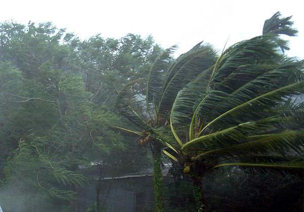 Шрі Ланка погода по місяцях сезон дощів