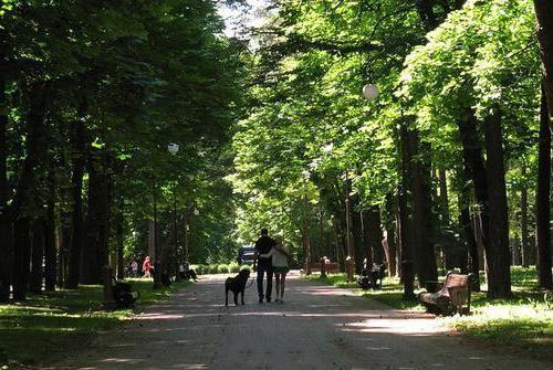 парк челюскинцев в Мінську атракціони