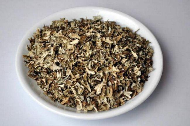 Ісландський мох, застосування при кашлі