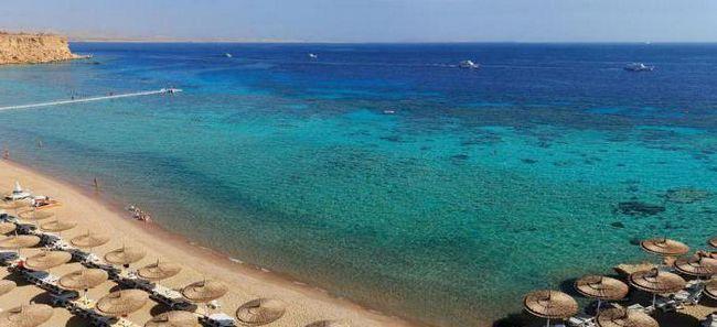 єгипет reef oasis beach resort 5