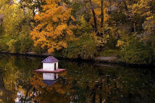 найкрасивіші парки москви восени