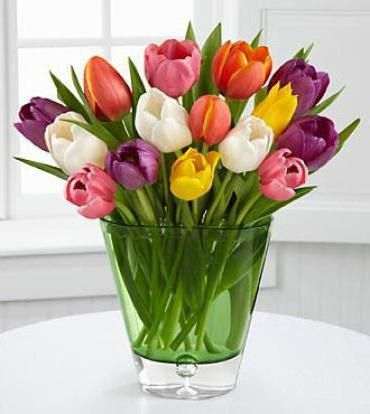 Фото - Скільки коштує тюльпан: цікаві факти про квітку