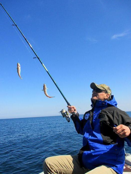 Фото - Снасть самодур - це Рибальські снасті. Самодури на ставриду