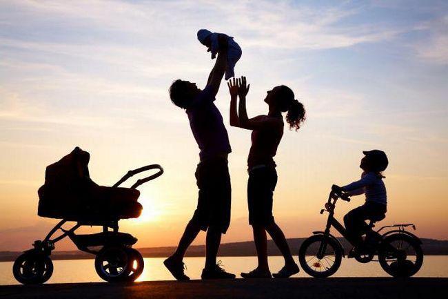 Соціальний статус сім'ї види