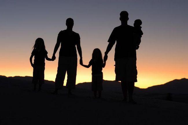 Соціальний статус сім'ї приклади