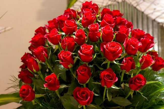 Фото - Сонник: червоні троянди. Значення і тлумачення сну