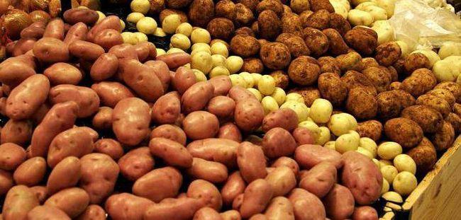 Фото - Сорти картоплі в Білорусі: ранні, середньоранні, середньостиглі, середньопізні, Назви, опис, врожайність