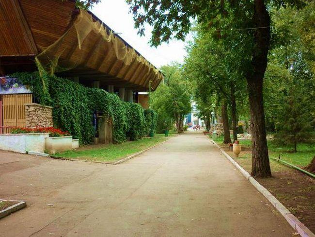 Струківська парк самара як доїхати