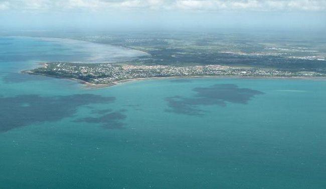Фото - Тасманове море: розташування, клімат, рослинний і тваринний світ