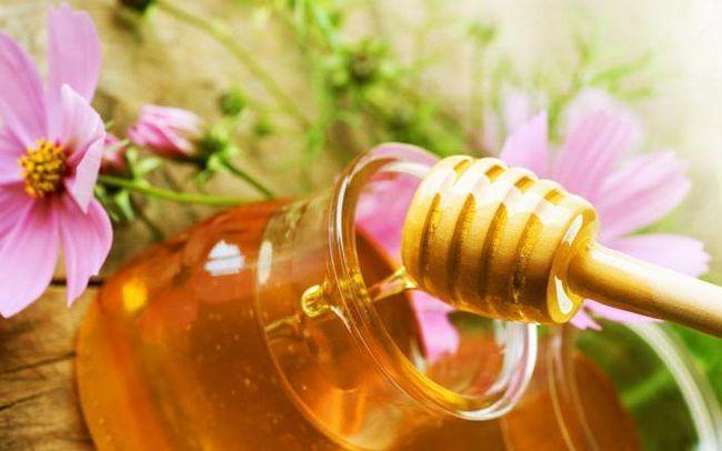 рецепт гарбуза з медом для лікування печінки