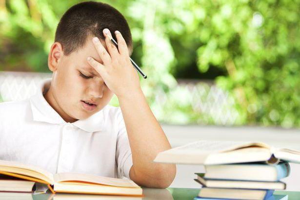 Фото - Посидючість - це Як розвинути посидючість у дитини?