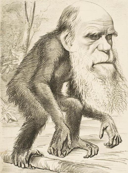 дарвін внесок у біологію стисло